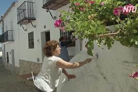 Традиционная побелка домов на юге Испании началась позже из-за пандемии
