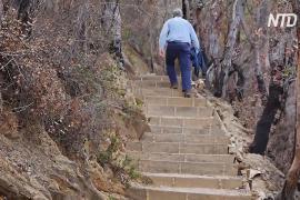 Восстановление после пожара: четыре австралийских горы обзавелись новыми пешеходными тропами