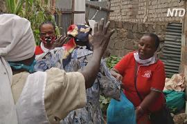 Кенийские волонтёры приносят еду пожилым в самоизоляции