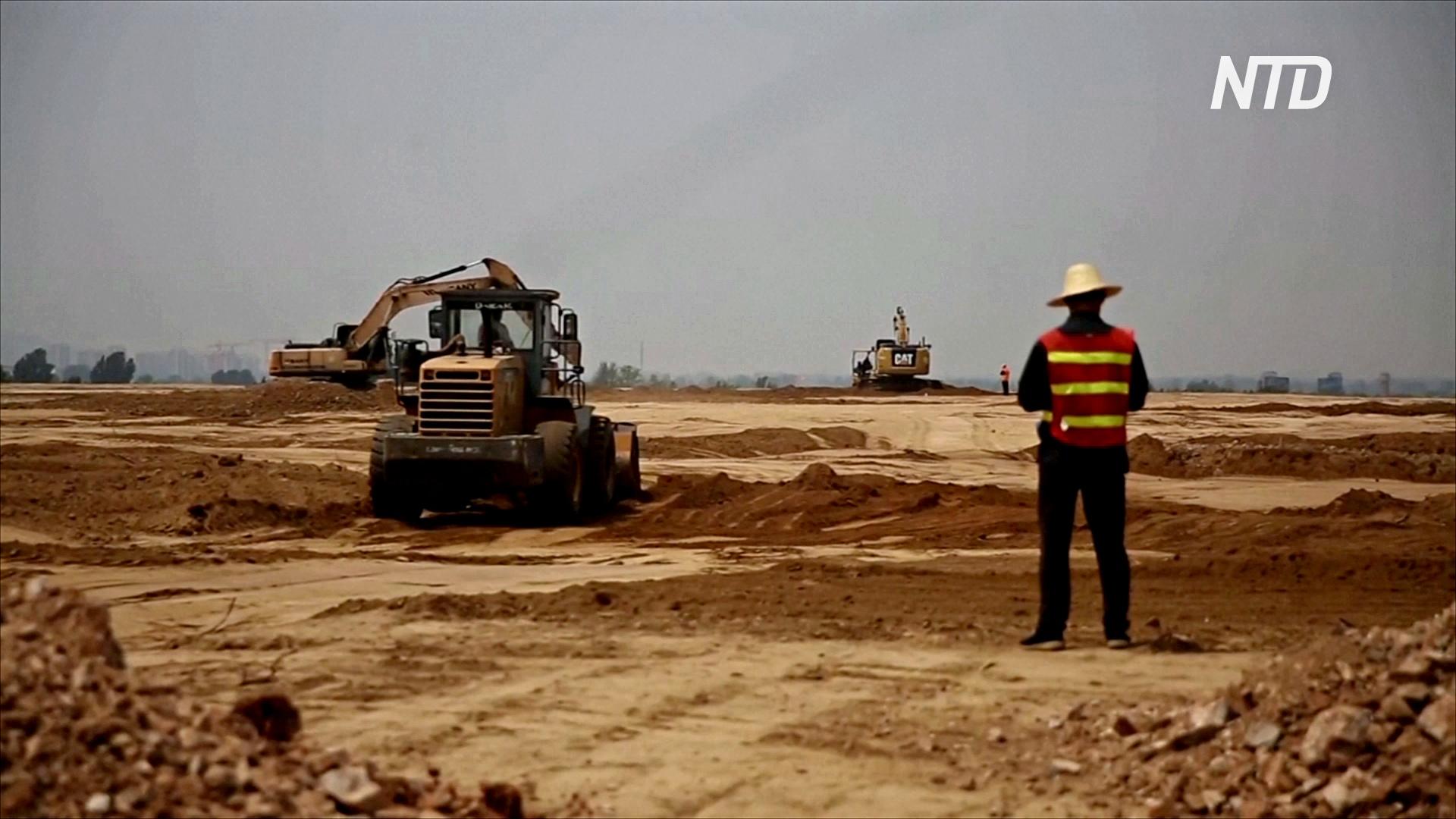 Китай строит фермы, чтобы восполнить нехватку свинины