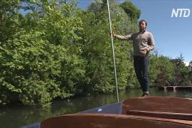 Традиционные лодки с шестами возвращаются на каналы Кембриджа