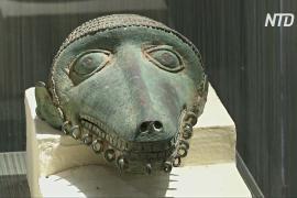 ЮНЕСКО: коронавирус угрожает существованию многих музеев мира