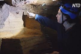Пещеры Австралии исследуют в надежде изучить вымершую мегафауну