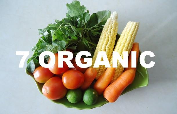Все для правильного и здорового питания