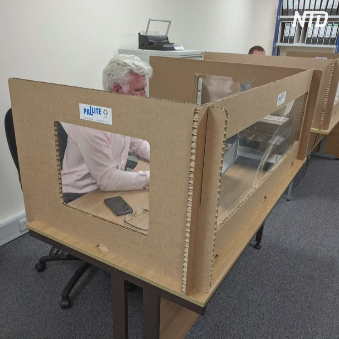 Британских офисных сотрудников сажают в коробки