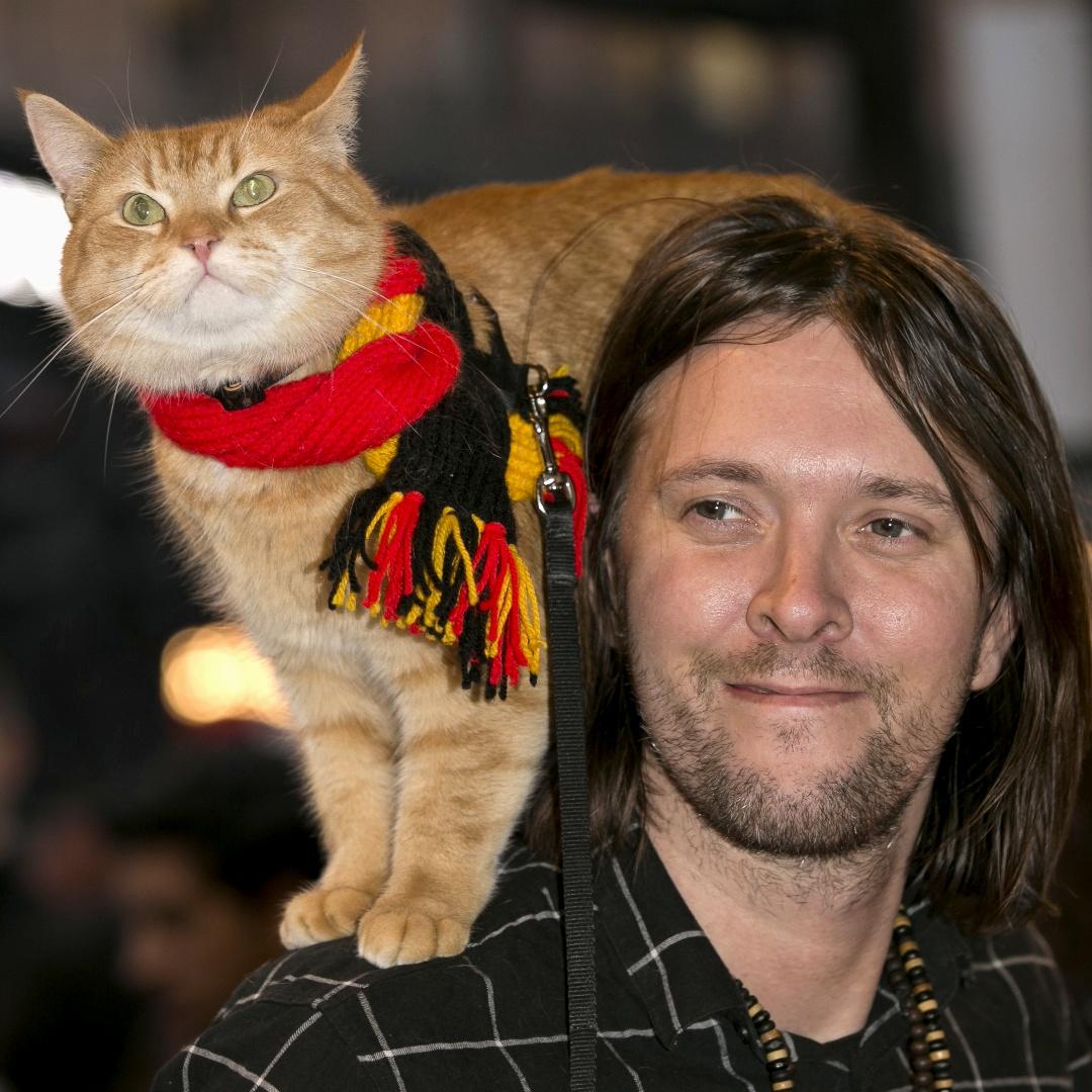 Умер знаменитый британский кот по кличке Боб