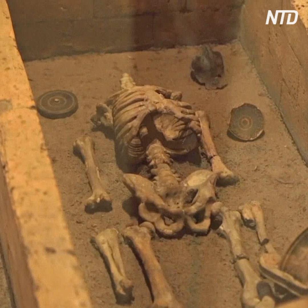 Секреты этрусской цивилизации раскрывают артефакты из древней гробницы
