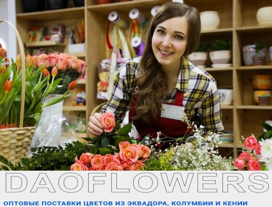 Оптовые поставки цветов из Эквадора, Колумбии и Кении