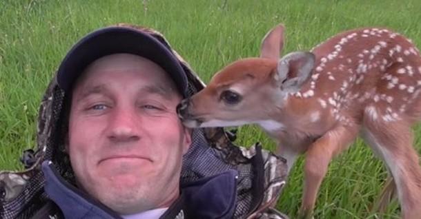 Мужчине пришлось взять оленёнка домой, чтобы спасти ему жизнь