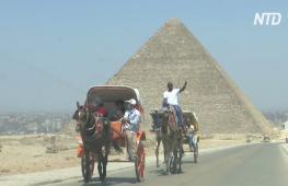 В Египте возобновилось международное авиасообщение и открылись музеи