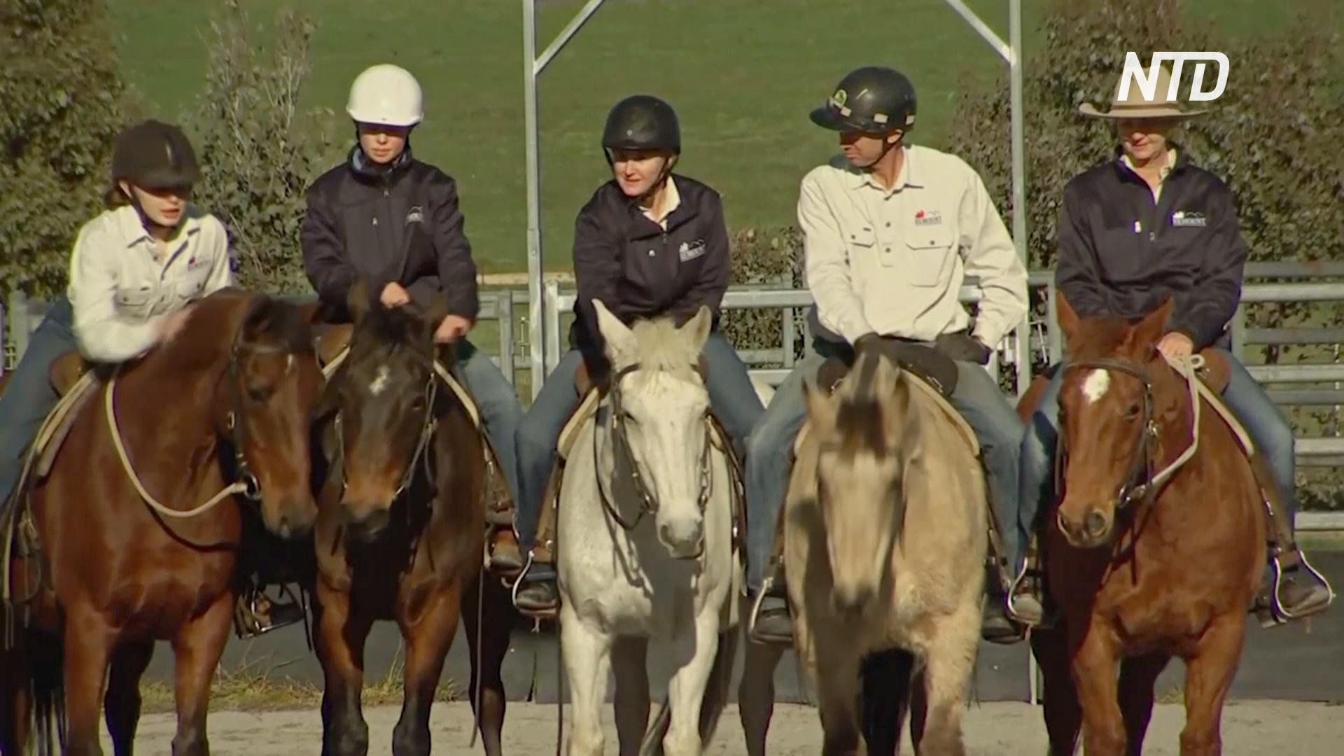 Лошади-терапевты помогают военным справиться с посттравматическим стрессовым расстройством