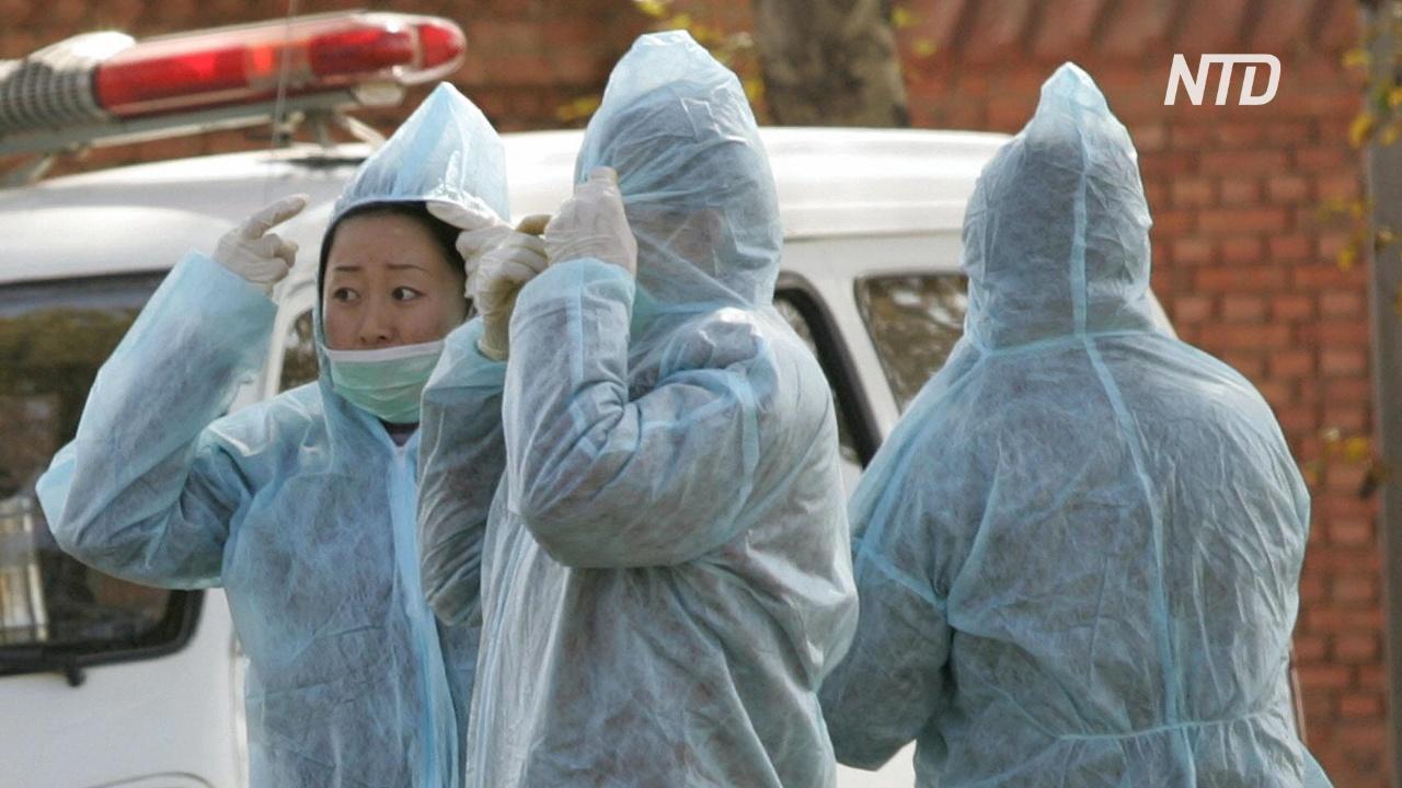 ВОЗ следит за вспышкой бубонной чумы во Внутренней Монголии