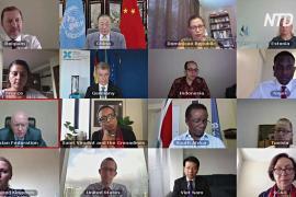 Китай и Россия наложили вето на резолюцию, продлевающую поставку гумпомощи в Сирию