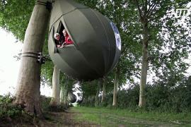 Сон на дереве: в Бельгии становится популярным отдых в коконах