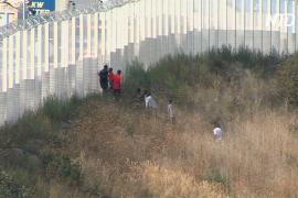 Главы МВД Франции и Великобритании договорились вместе остановить миграцию через Ла-Манш