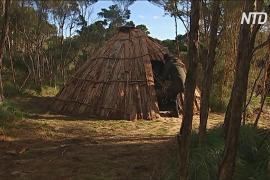 Традиционные жилища аборигенов возводят на острове Тасмания