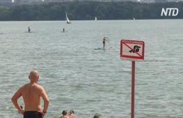 Москвичи массово отдыхают на городских пляжах вместо заграничных