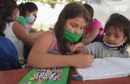 Школа под деревом: подросток обучает эквадорских детей во время карантина