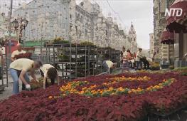 Летняя выставка цветов украсила Красную площадь в Москве