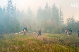 В Ханты-Мансийском АО растёт площадь лесных пожаров