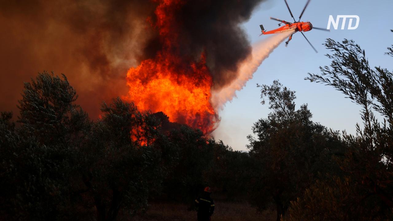 В Греции лесной пожар угрожает жилым домам