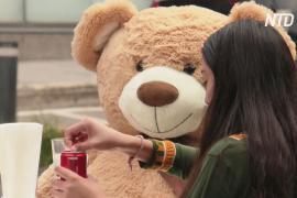 Плюшевое дистанцирование: за столиками кафе в Мехико посадили медведей