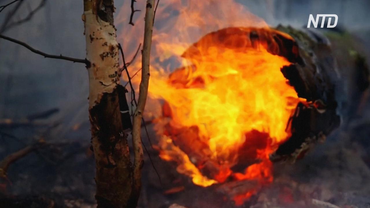 В Сибири и на Дальнем Востоке бушует 140 лесных пожаров