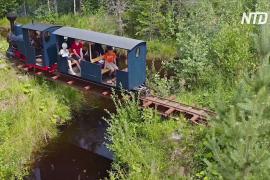 Дачный аттракцион: по самодельной узкоколейке россиянина на паровозе катаются люди