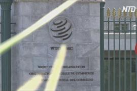 ВТО создала комиссию для решения спора Японии и Южной Кореи