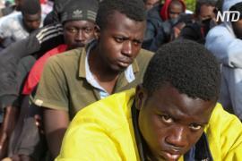 ООН: за половину случаев насилия над мигрантами ответственны правоохранители
