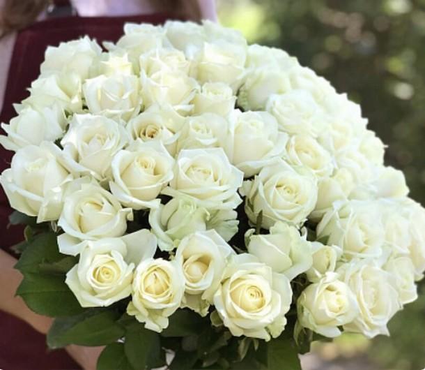 51 белая роза 50 см (Россия)