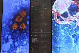 Пандемии и лауреаты Нобеля: новая выставка в Стокгольме