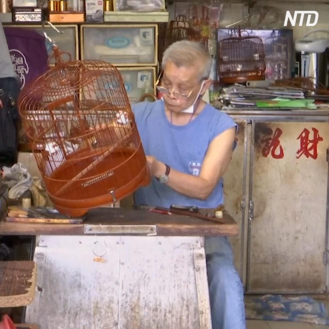 Бамбуковые клетки для птиц: мастерам в Гонконге некому передавать знания