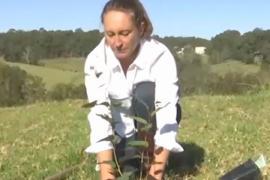 Австралийка создаёт экокладбище с деревьями над могилами