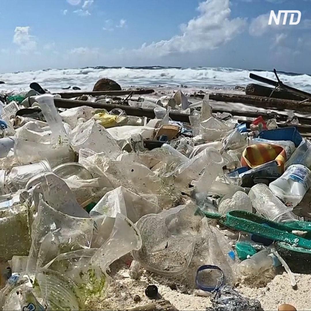 Объёмы пластика в океанах могут утроиться уже к 2040 году