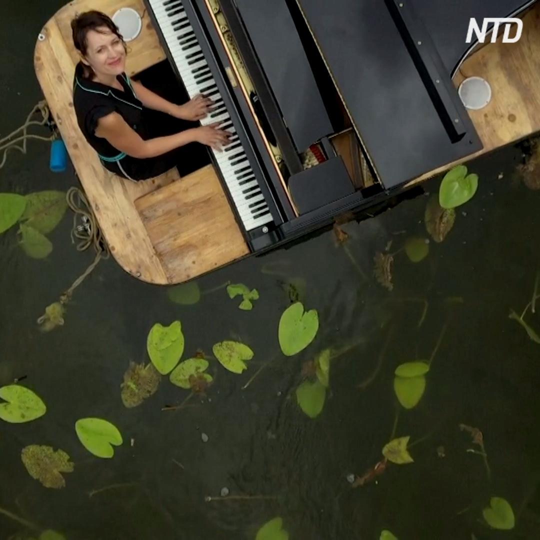 Плавающее в пруду фортепиано: во Франции дают концерты на воде