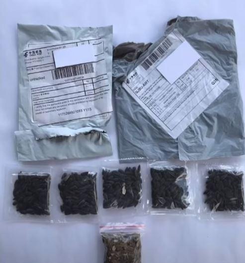Семена из Китая