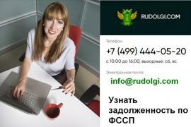 Портал rudolgi.com – информация о задолженности