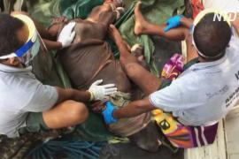 Во время наводнения в индийском заповеднике спасли детёныша носорога