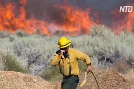 8000 человек эвакуировали из-за пожара к востоку от Лос-Анджелеса
