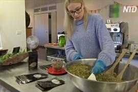 17-летняя австралийка основала компанию по производству травяных чаёв