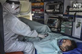В Латинской Америке число случаев COVID-19 достигло 5 миллионов