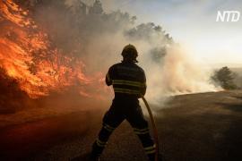 Под Мадридом полыхает лесной пожар