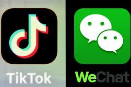 Дональд Трамп запретил транзакции с TikTok и WeChat