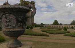 Гости Виндзорского замка впервые за 40 лет смогут гулять по королевскому саду