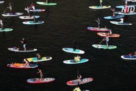 По каналам Петербурга проплыли 3000 сапсёрфингистов