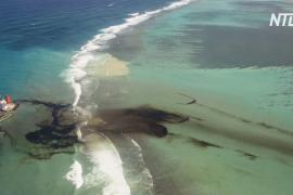 Маврикийцы ликвидируют последствия разлива нефти с японского танкера