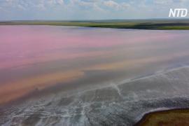 Розовое озеро Кобейтуз в Казахстане пострадало от эковандализма