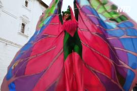 Мимы, клоуны и артисты: в Суздале прошёл фестиваль уличных театров