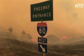 Небывалые пожары в Калифорнии начались из-за молний
